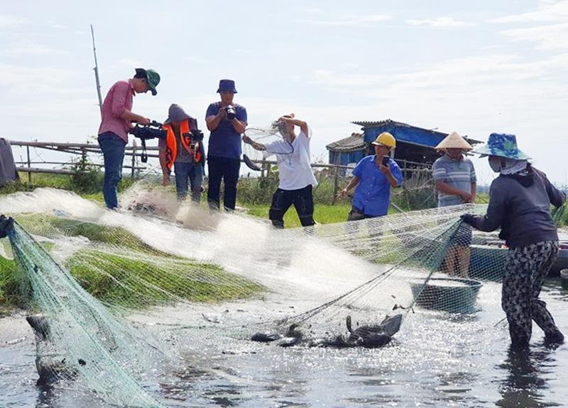 Du khách đến tham quan trải nghiệm nghề nuôi cá chẽm tại xã Tam Thanh. Ảnh: T.Q
