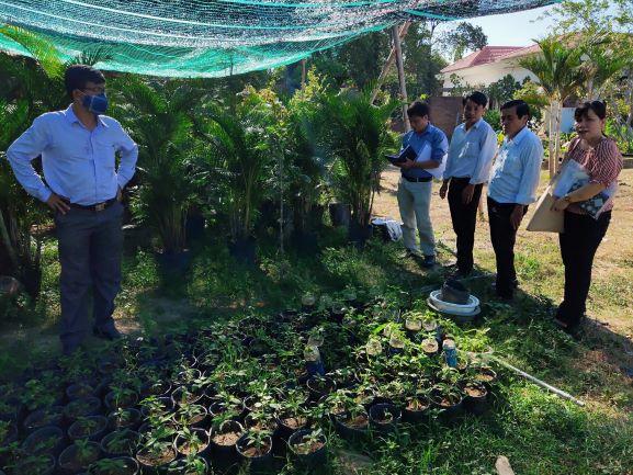 Đoàn kiểm tra thực tế tại THT trồng hoa, cây cảnh (Điện Hòa)